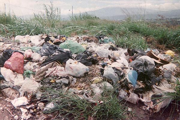 Principales Causas De La Contaminacion Ambiental Wikipedia