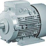 Motor Electrico   1LG4