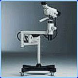 Microscopio estereo