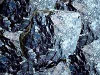 Carbon Mineral Bituminoso