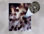 Bio Reactor cama fluidizada