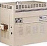 Calentadores de agua con Encendido Electronico de Alto Rendimiento para psicina