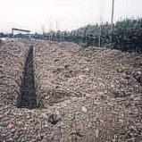 Reutilizacion del Agua Depurada