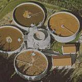 Reactor Biologico